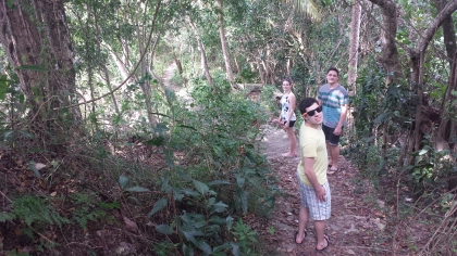 I love jungles!